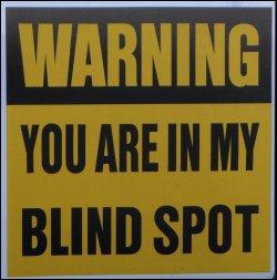 Blind Spots Bazerman Pdf